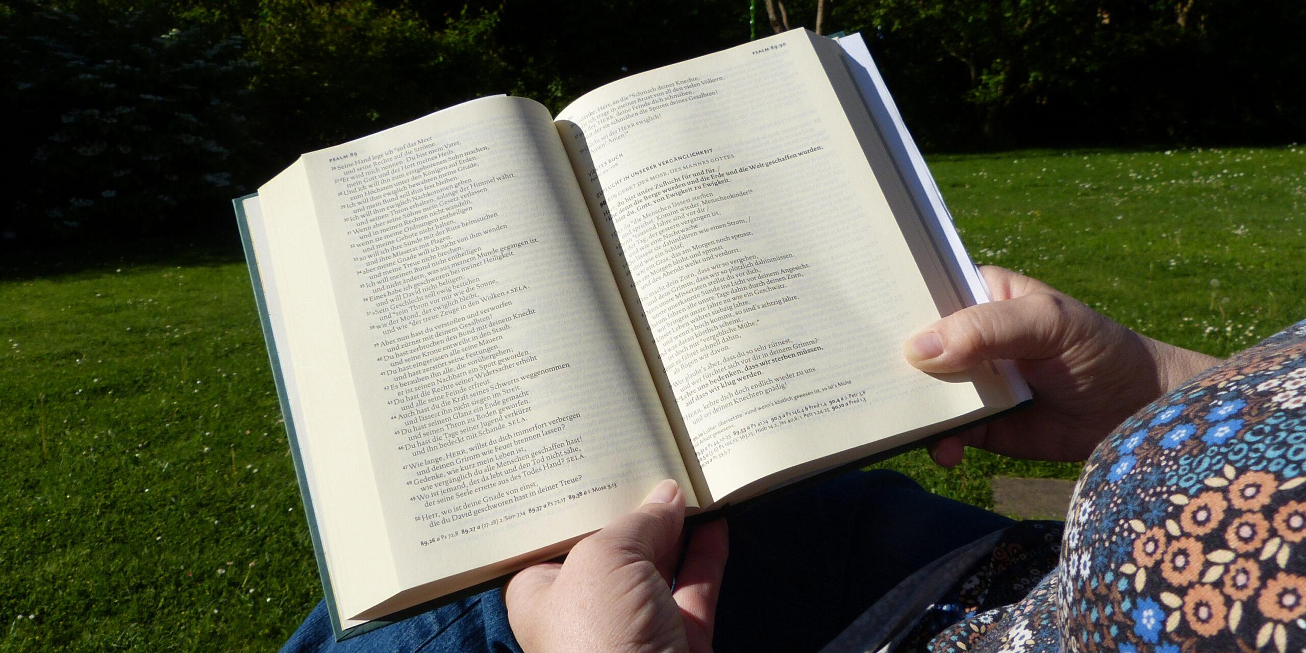 2008_NewsHol_Bibellesen